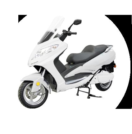 efun-puma-white-ecomobility-green-scoomart